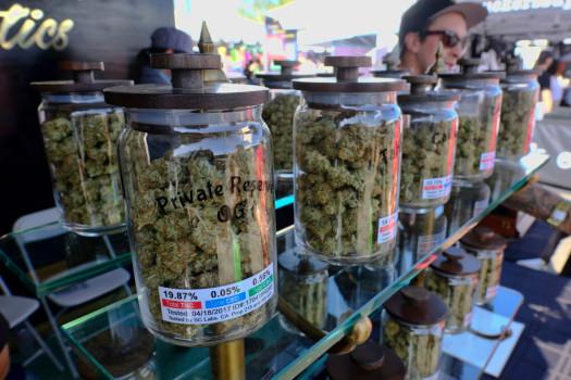 Canceled 400 Marijuana Business Licenses Numbs California Cannabis Industry