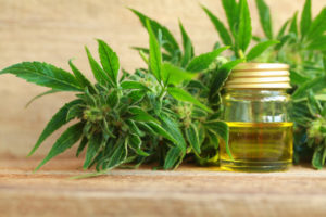 FDA Requires More Data For Regulations Related To Hemp Derived CBD