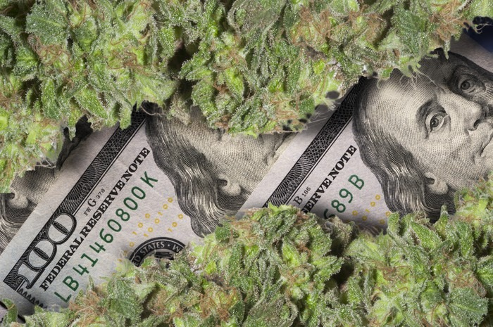 Five American Cannabis Stocks With Higher Returns In 2019