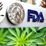 Not In Hurry To Craft CBD Exclusions Amid Safety Concerns FDA official