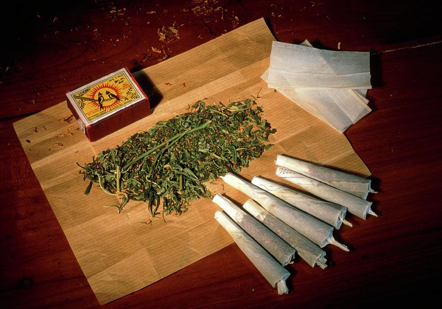 Smokable Ban Repeal Lets Medical Cannabis Firms Enter The Florida Market