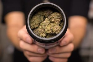 Lack Of Retail Outlets Hampers Sale Of Recreational Cannabis In East Canada