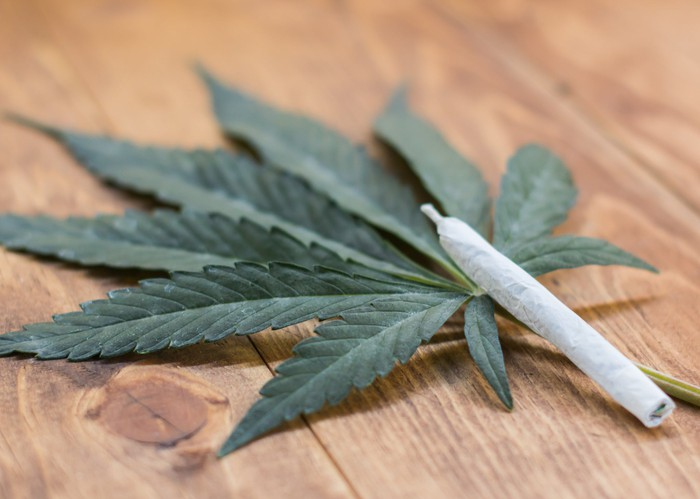 Inquiry Launched By Australian Government Regarding Use Of Medical Cannabis